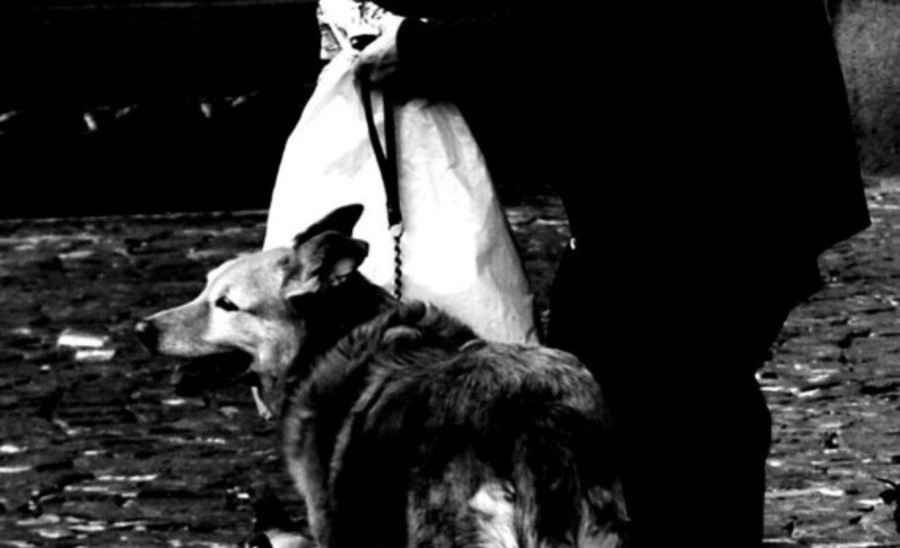 Alessandra Mai, Il buio della fame, Napoli