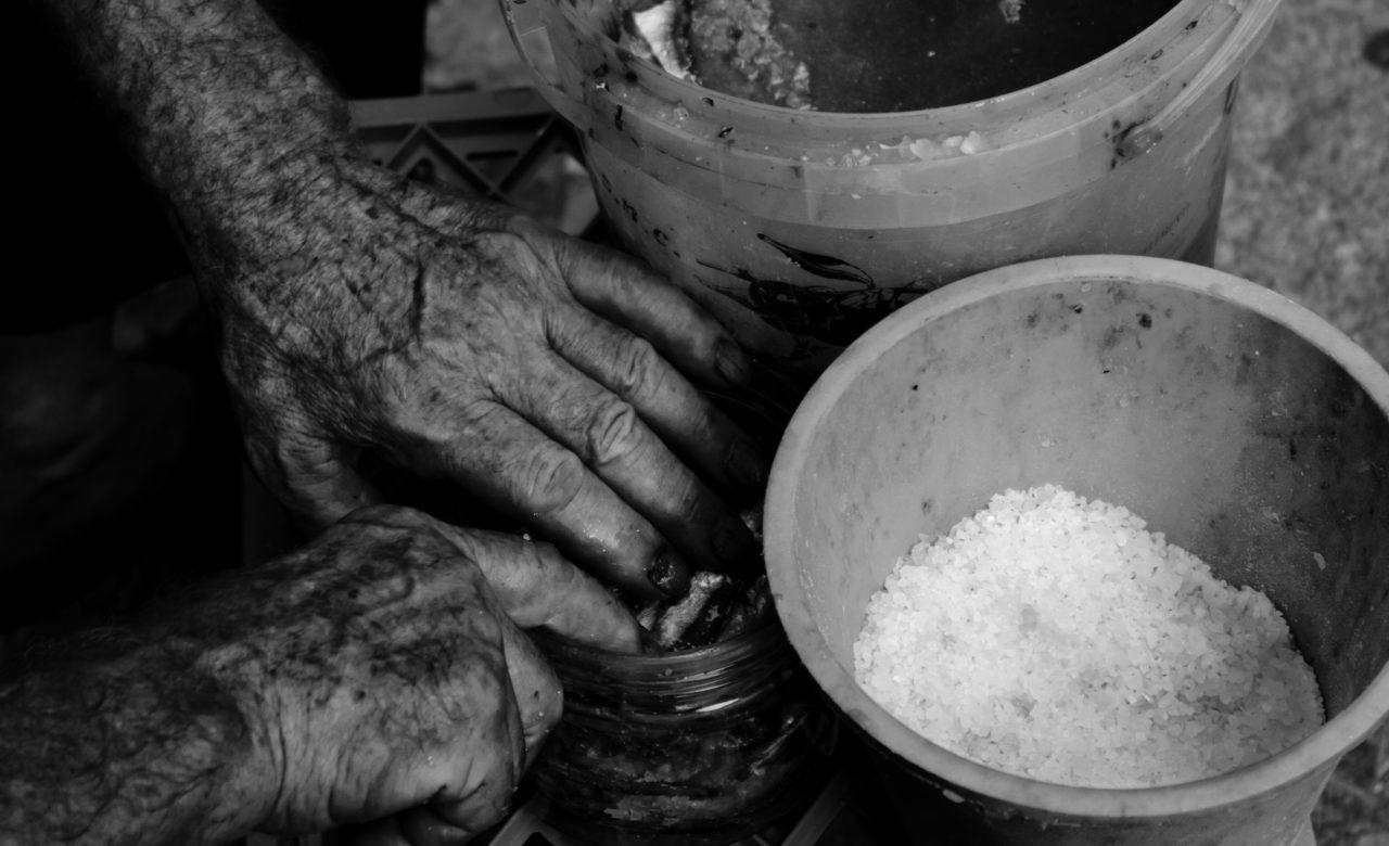 Anna Izzo, Lavorazione delle alici alla vecchia maniera, Salerno