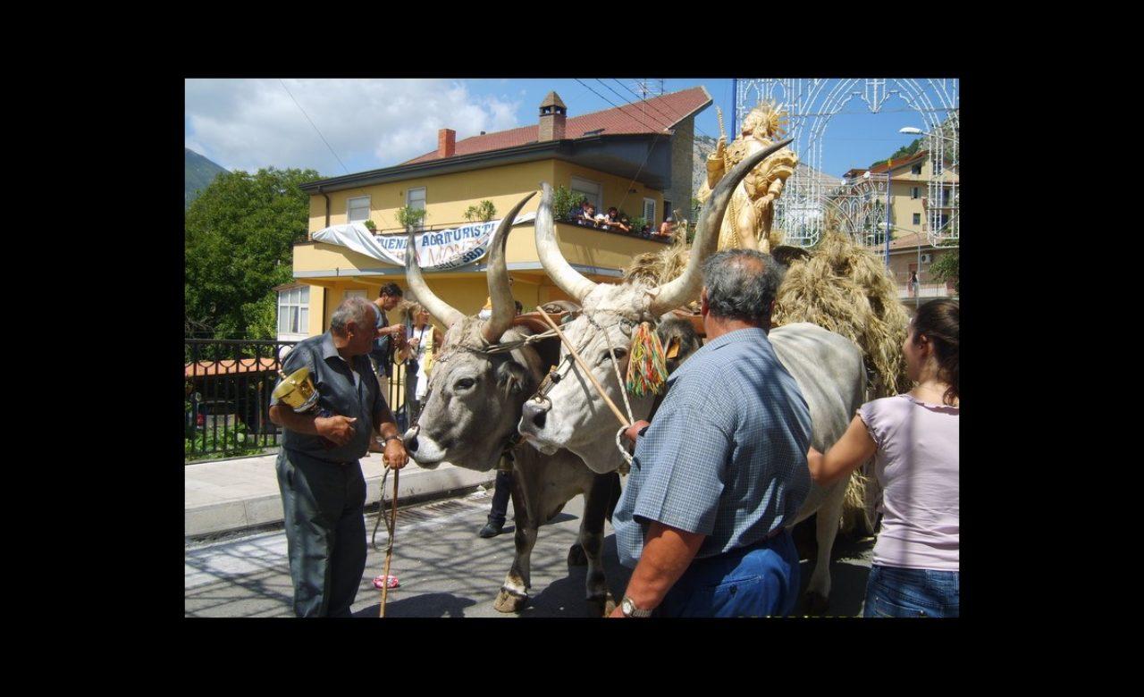 Festa del grano, Foglianise (BN)- Luigi Fiore