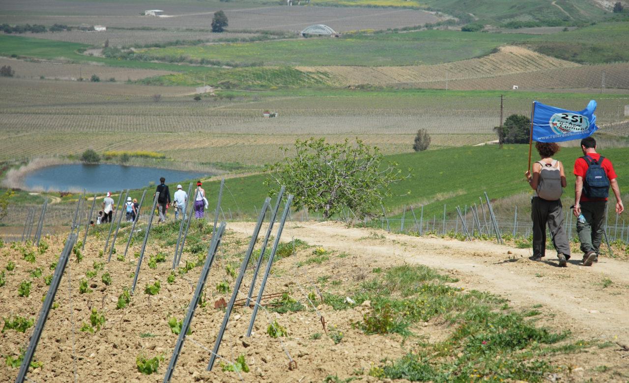 Giulia Fiocca, Discesa tra le campagne della Valle del Belice (tra Montevago e Salaparuta)
