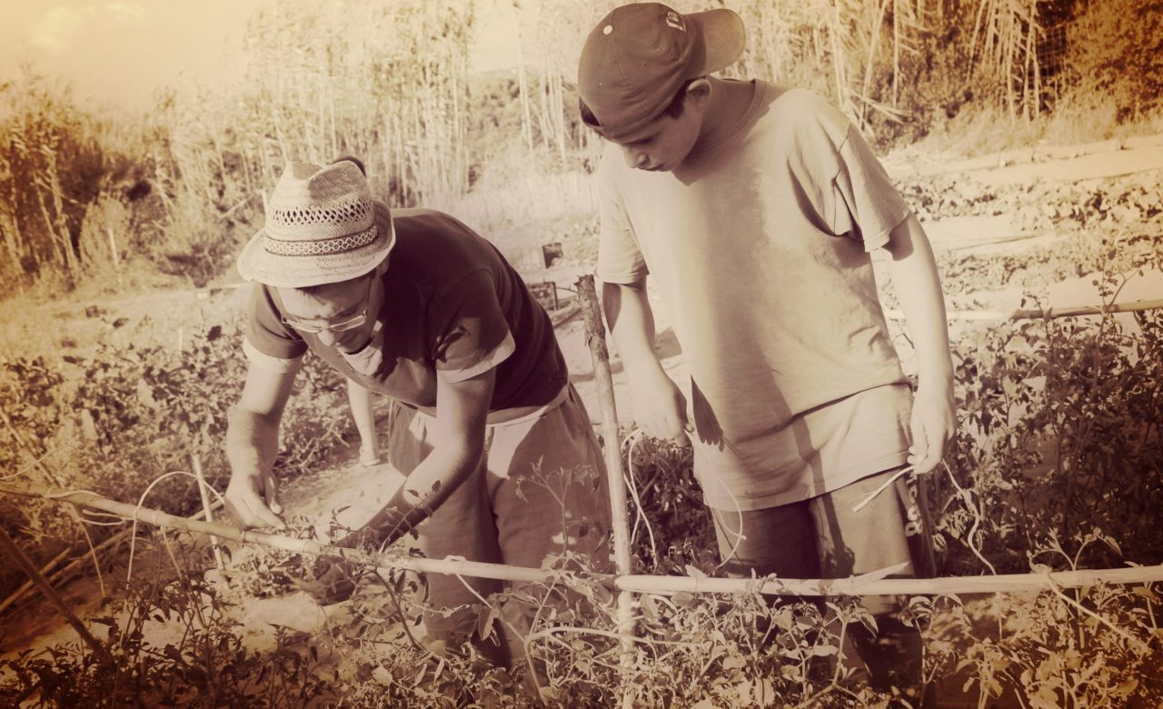 NATURA_Progetto Coltiviamo l'orto del futuro, Sant'Antioco (CI) – Gian Mauro Dessì