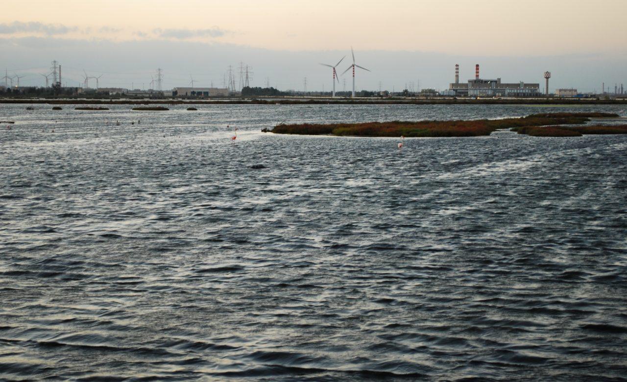 SOSTENIBILITA'_Energia sostenibile, Cagliari_Elisa D'Arrigo