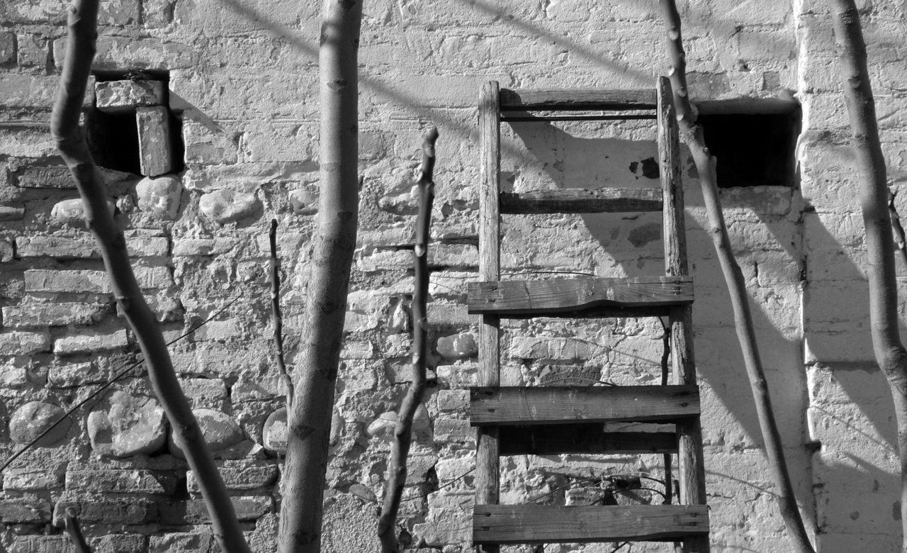 la vita  una scala