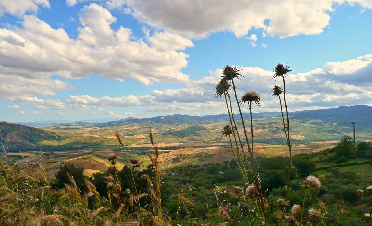 Erminia Viccaro, Vista da Grassano sulla Basentana, Grassano (MT)