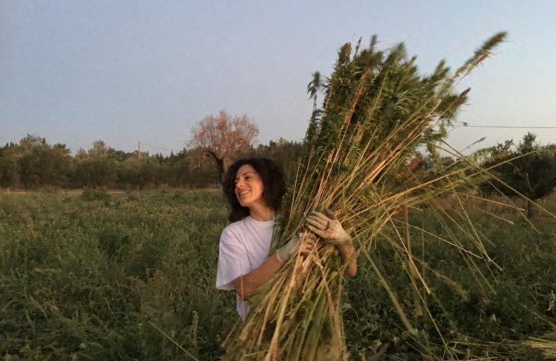 Foto dalla pagina Facebook LUNA_Laboratorio rurale
