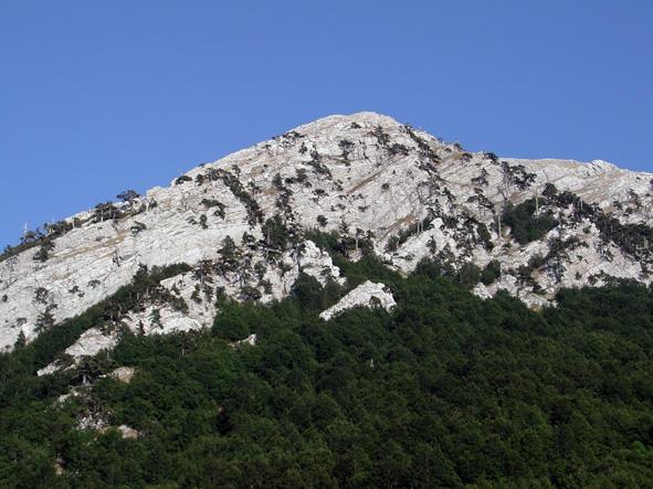Da Flickr.com, Monte Pollino, foto di francyag, Licenza Creative Commons (CC BY-NC 2.0)