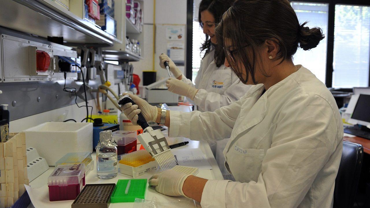 Brains to South - selezionati 14 progetti di ricerca nel mezzogiorno