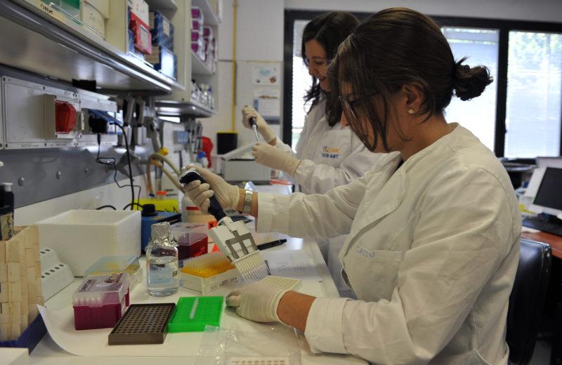 14 progetti di ricerca nel mezzogiorno sostenuti dalla Fondazione Con Il SUD