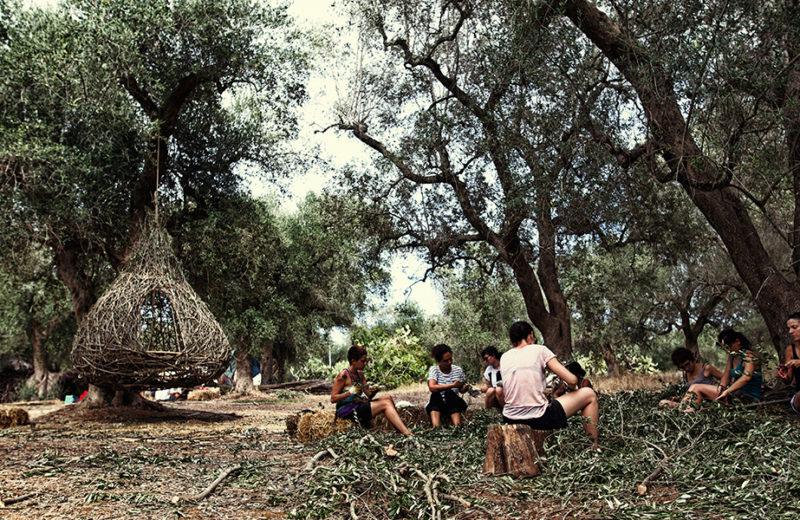 Un gruppo di partecipanti a un workshop si accinge a realizzare i due progetti vincitori. Pulitura dei rami di ulivo prima dell'intreccio. Foto di Francesco Buccarelli (VHS)