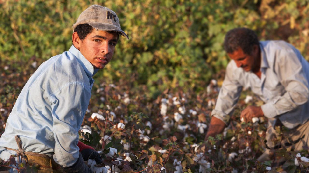 Bando per il contrasto dello sfruttamento dei lavoratori stranieri